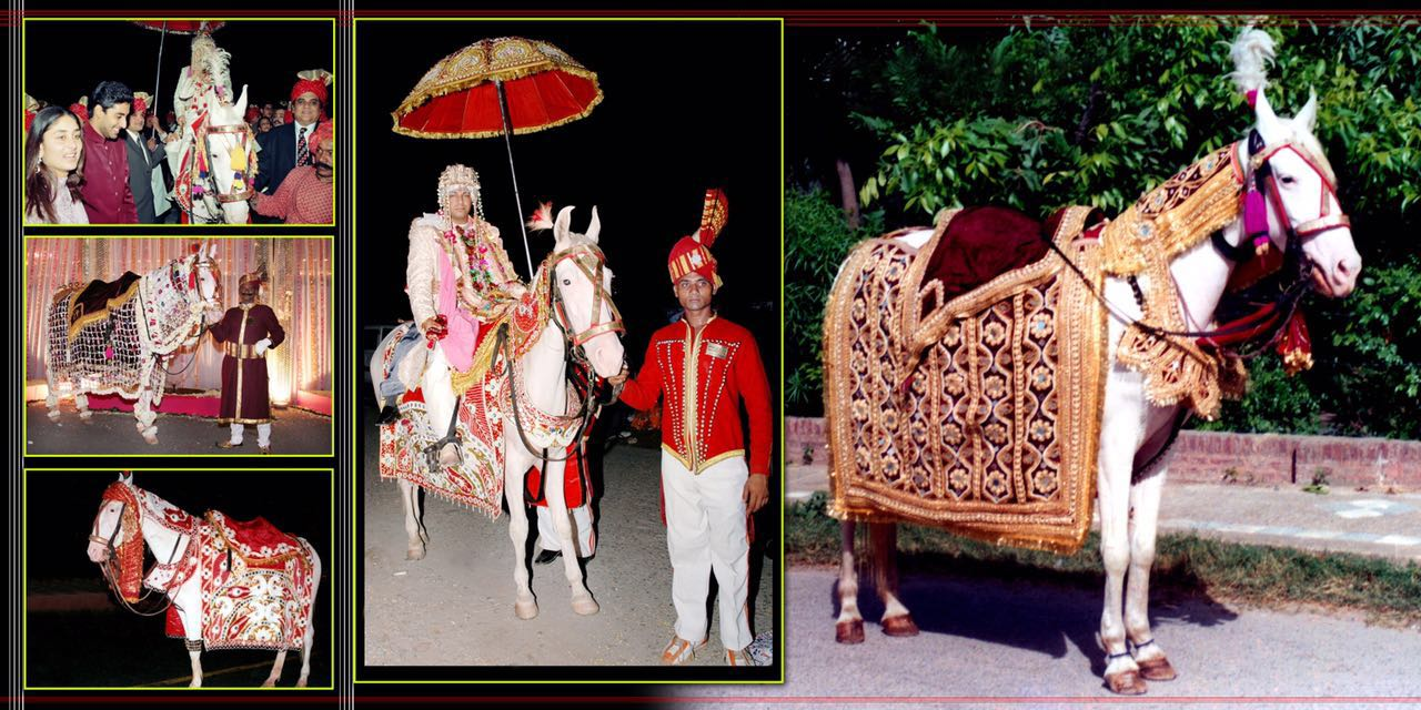 Swagat Band The Wedding Makers in Delhi